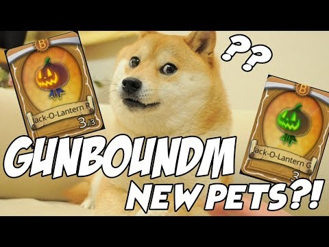 GunboundM New Pets?! | Overview Game Play And Tips