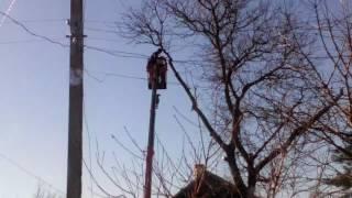 Как пилят дерево(, 2017-01-23T11:06:49.000Z)