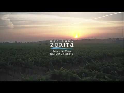 Hacienda Zorita Natural Reserve