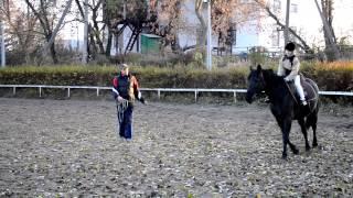 Уроки верховой езды для детей в Черкассах