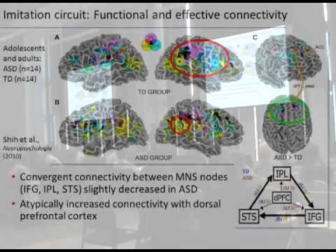 fMRI Approaches to Network Connectivity in Autism Spectrum Disorders