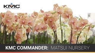 KMC Commander: Matsui Nursery Case Study