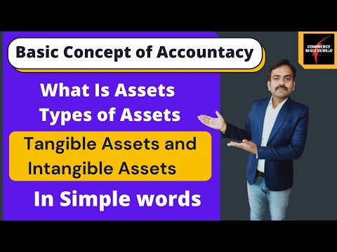 What is Assets || Types of Assets || Tangible and Intangible Assets || Basic Concept of Accountancy