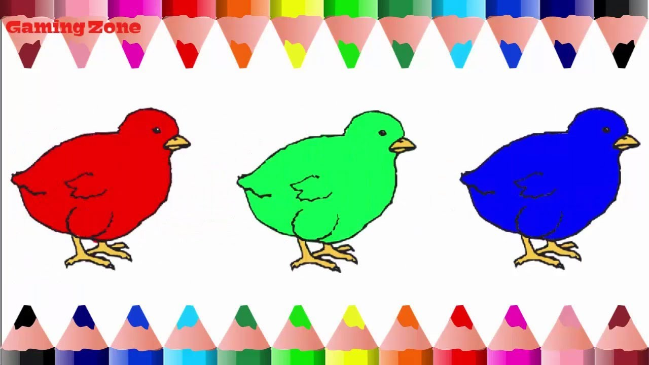 Coloring Baby Chicken With Multiple Colors - Coloring Pages ...