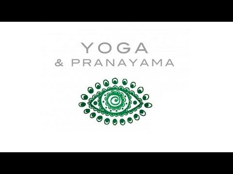 1 HOUR of Relaxing Music Flute  - Yoga & Pranayama - Amigdala