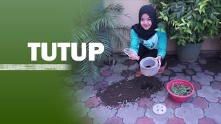 Konservasi Air dengan Biopori