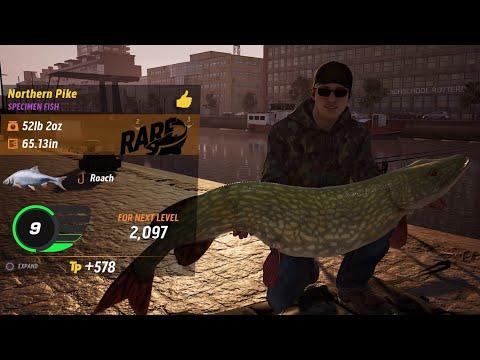 The Catch: Carp & Coarse Rare 52lb Northern Pike (Clip # 9)  