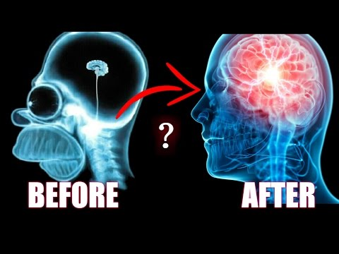 BDNF | How to Literally Grow The Size Of Your Brain & Improve Your Memory [Einstein-like Tips]