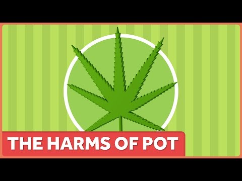 The Harms Of Marijuana