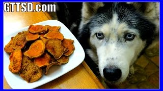 DIY SWEET POTATO DOG TREATS | Snow Dogs Snacks 39 | Gluten Free Dog Treats