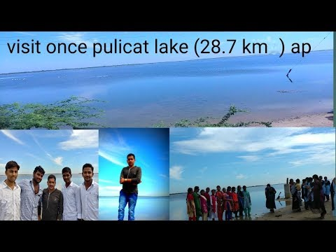 visit pulicat lake in andhrapradesh near Satish Dhawan Space Centre (SDSC) SHAR - ISRO.