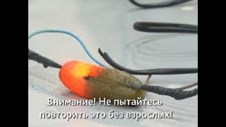 �������� ���� Эксперимент: светящиеся огурцы ������