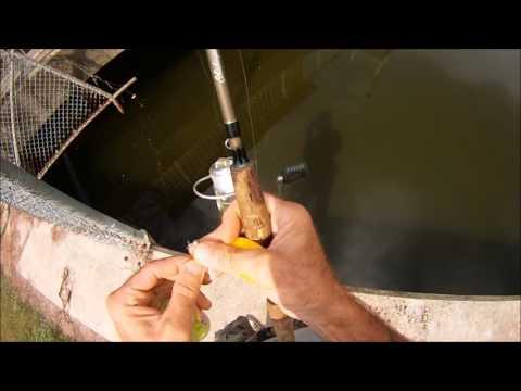 Croaker Jigging And Catching Bait
