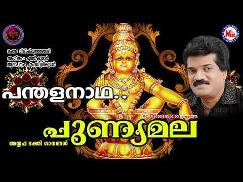 പന്തളനാഥാ പമ്പാവാസാ | PUNNYAMALA | Ayyappa Devotional Song Malayalam | M.G. Sreekumar