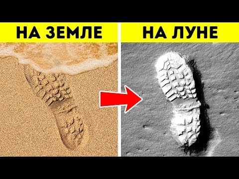 Почему на луне остаются следы ног и еще 60+ поразительных фактов
