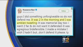 After Brief Twitter Hiatus Prompted By Her Own Racist Remark, Roseanne Barr Tweets She's Considering