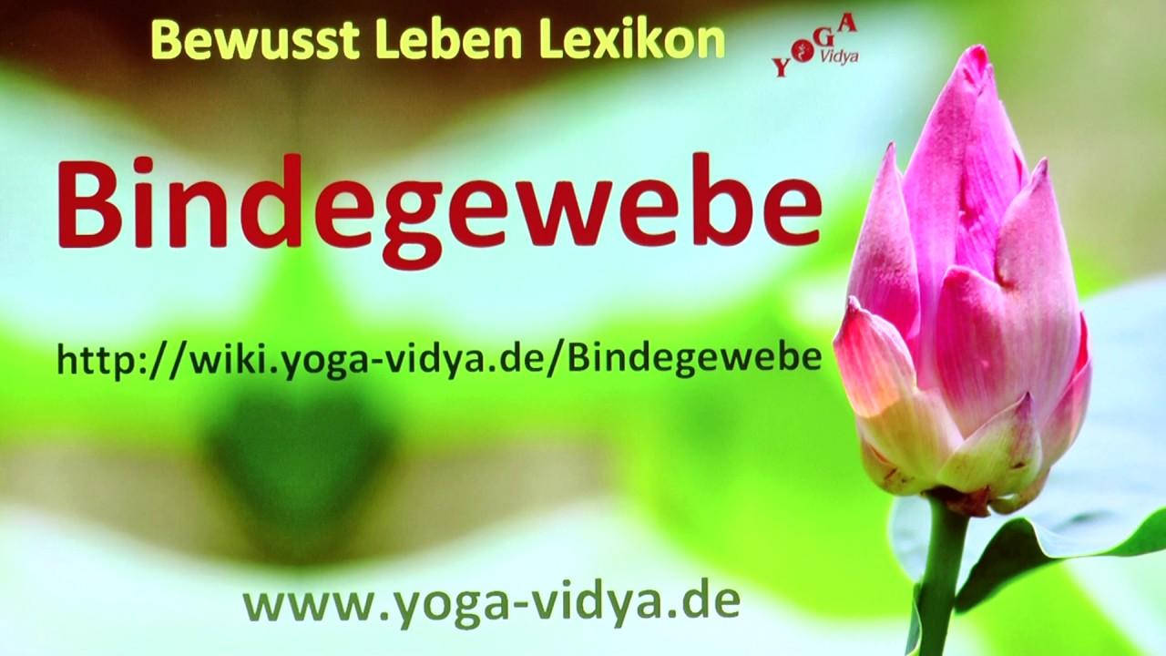 Bindegewebe - YouTube