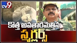 African snake among exotic animals seized at Chennai airport  - TV9