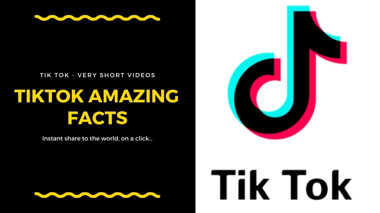 15 Fun TikTok Facts