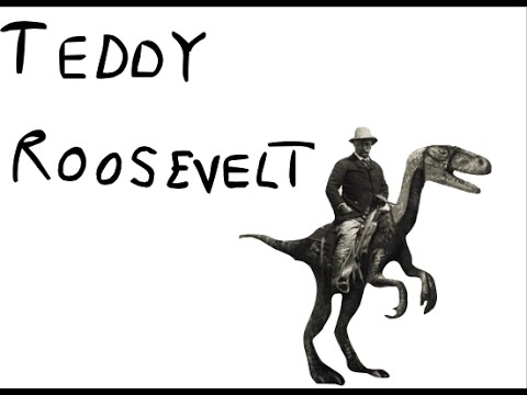 A Guide to Teddy Roosevelt