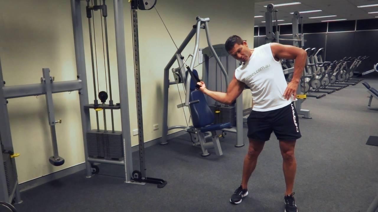 Standing Oblique Cable Crunch (Exercises.com.au) - YouTube Oblique Exercises Cable