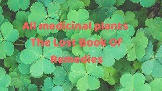 Download Neeli Medicinal Plant Videos - Dcyoutube
