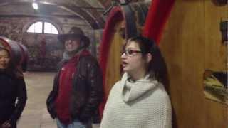 Гастрономические туры по Италии с русским гидом(, 2012-11-04T23:28:43.000Z)