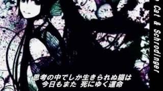 Repeat youtube video 【初音ミクオリジナル】猫とシュレーディンガー