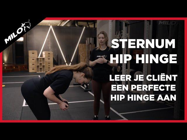 Sternum Hip Hinge