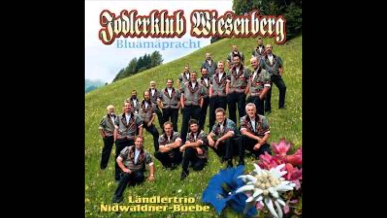 Ländlertrio Nidwaldner Buebe - Sugar Baby #1