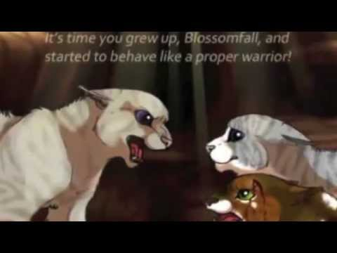 Top 10 Worst Warrior Cats! - Animals Heaven