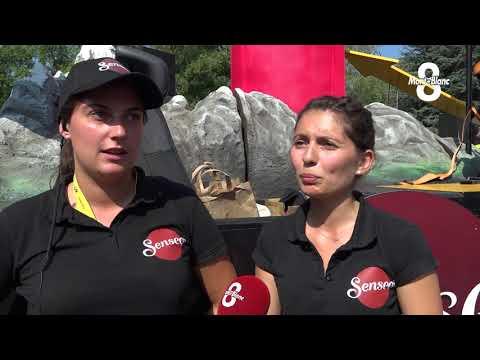 Les Dessous De La Caravane Du Tour De France 2018