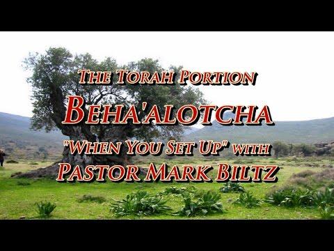 Saturday, June 18, 2016: When You Set Up (Beha'alotcha)