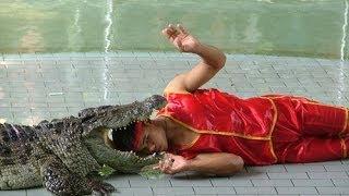 Шоу крокодилов. Паттайя. Интересно и опасно)))