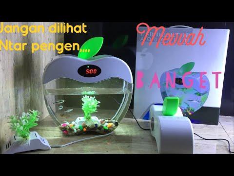 mini-fish-tank-apple-aquarium-usb-mini-mewah-dan-unik-2015-a-jakarta-hobby