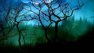 Darkseed  - Where Will I Go