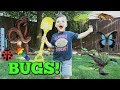 Caleb & Mommy Play with REAL Bugs Outside and Learn Colors! Pretend Play with Insects
