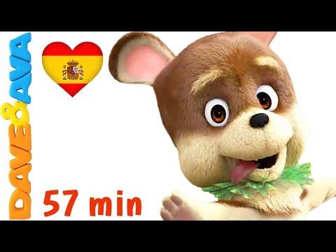 🐕 Сanciones Infantiles   La Canción de Bingo - Colección   Videos Infantiles de Dave y Ava 🐕