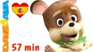 🐕 Сanciones Infantiles | La Canción de Bingo - Colección | Videos Infantiles de Dave y Ava 🐕