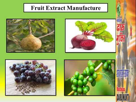 Natural Extract Manufacturer look for Organic and Herbal extract- Navchetana Kendra