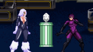 Catwoman Vs Black Cat