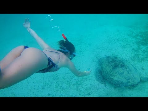 PHILIPPINES SEA TURTLE SWIM! - Port Barton Palawan