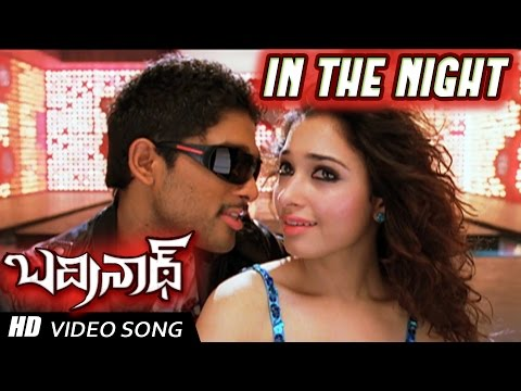 In the Night Full Video Song | Badrinath Movie | Allu Arjun, tamanna