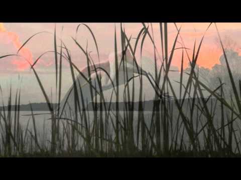 Shaka Slack Key / Keola Beamer