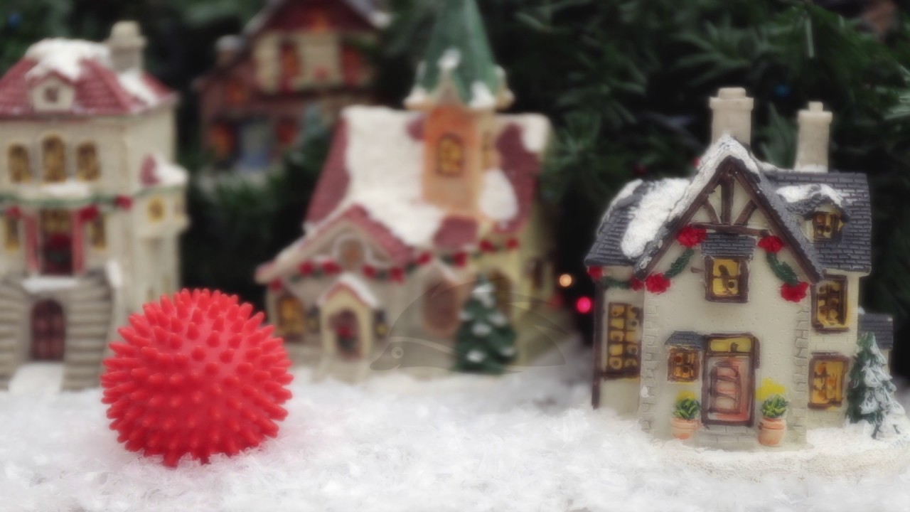 primjer božićne čestitke Primjer božićne video čestitke 2017.   YouTube primjer božićne čestitke