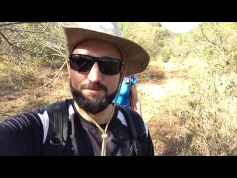 Südafrika #2 – Riesiger Baobab & Wandern am Blyde River Dam