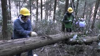 定例活動相模湖嵐山の森 20130120