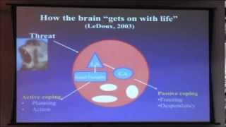 Dr. Bessel van der Kolk - Workshop internacional sobre neurociência do trauma