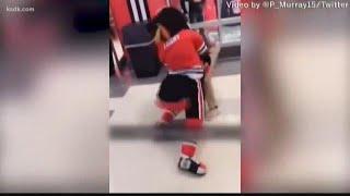 Blackhawks mascot fights with fan