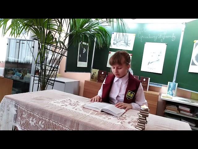 Изображение предпросмотра прочтения – СнежаннаЧепорнова читает произведение «Стихотворение в прозе.Мы ещё повоюем.» И.С.Тургенева
